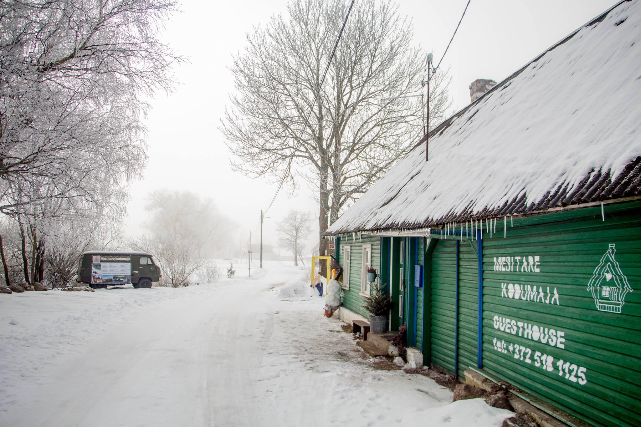 Mesi tare talvel